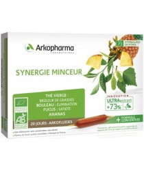 ARKOFLUIDES Bio Synergie Minceur