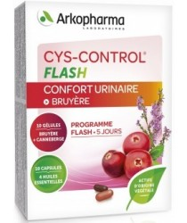 CYS CONTROL Flash